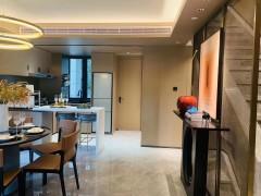 (霞山)保利宸悦花园5室2厅2卫200m²精装修