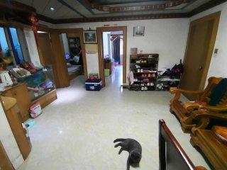 (赤坎)寸金住宅楼 3室2厅1卫